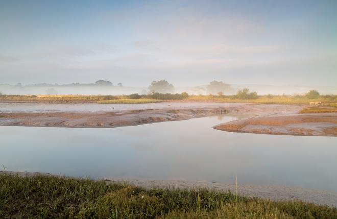 Near Turf Locks, Exe Estuary, dawn